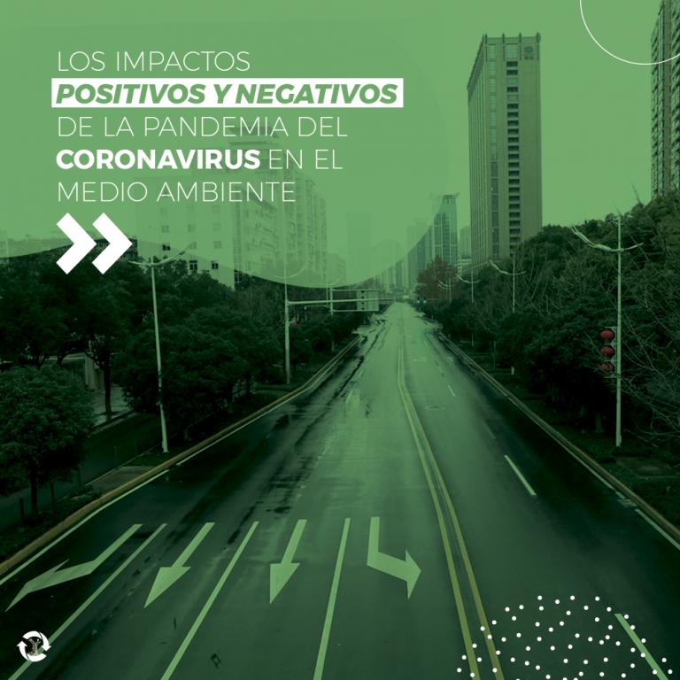 Los impactos positivos y negativos de la pandemia del coronavirus en el medio ambiente.