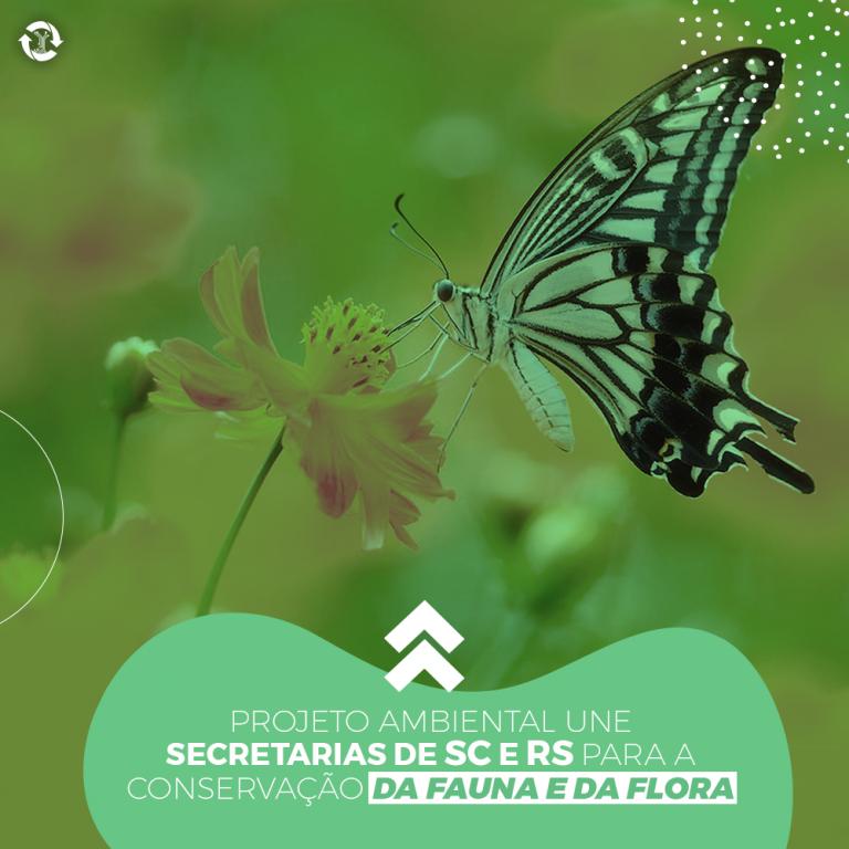 Projeto ambiental une secretarias de SC e RS para a conservação da fauna e da flora